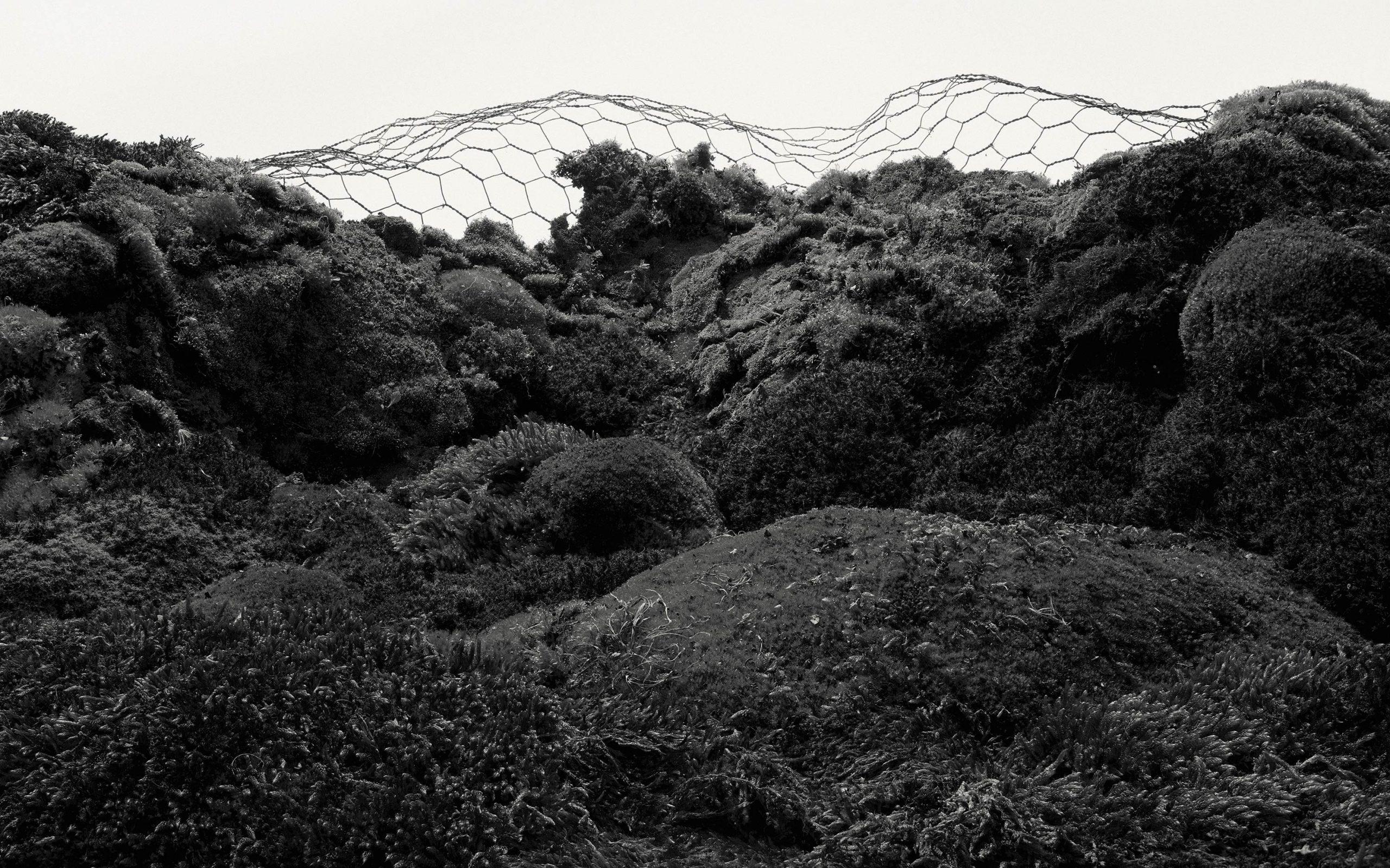 Wren-Agency-Luke-Evans-new-4