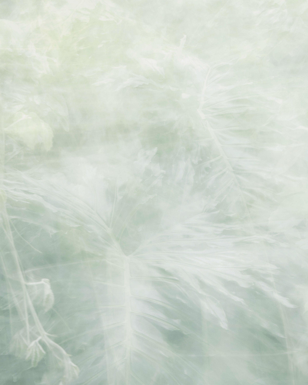 wren-agency-luke-evans-second-nature-9