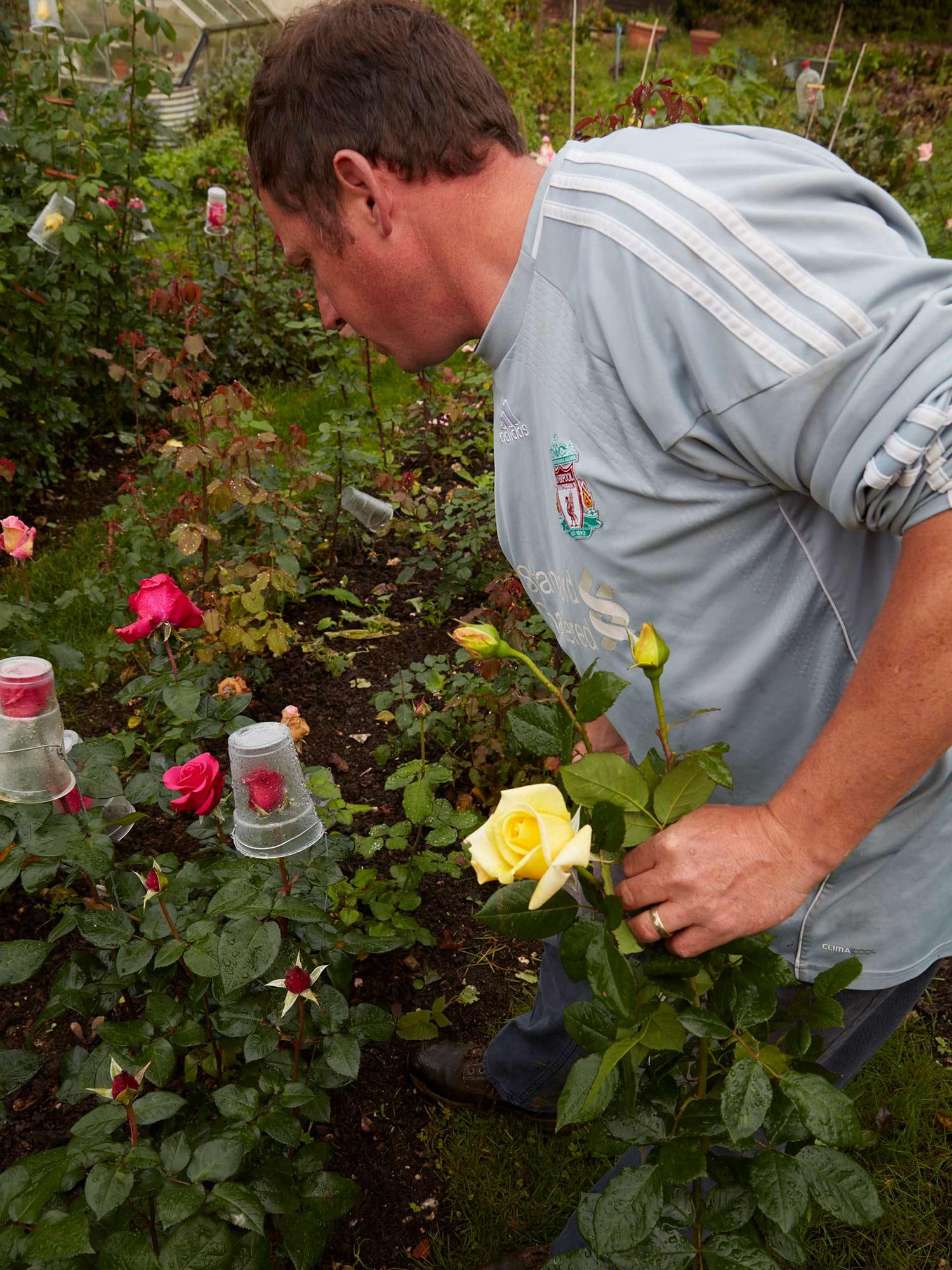 Selfridges_Roses_Shot_01_0025