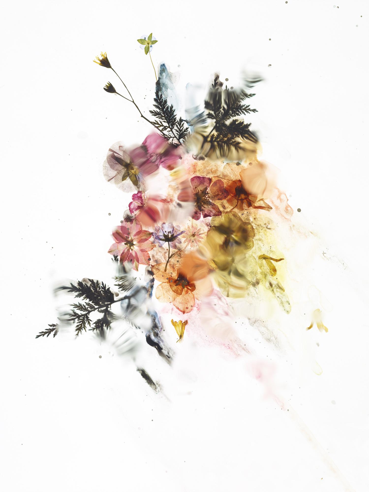 rf4201_dried_flower_test_s01_272